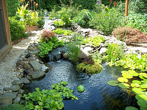 The first steps to building your own garden pond easy for Build your own garden pond