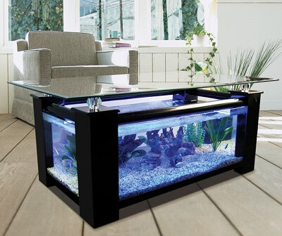 Black-coffee-table-fish-tank