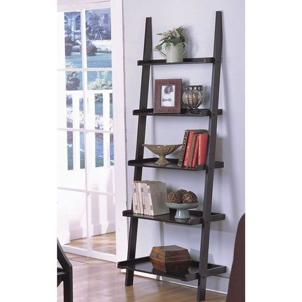 Unique 72-Inch High Leaning Ladder Style Magazine / Book Shelf with Black Finish