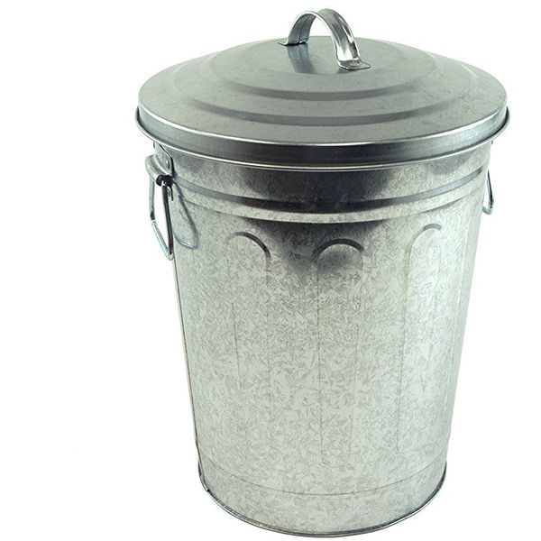 Steven Raichlen Galvanized Charcoal and AshTrashCan with Lid